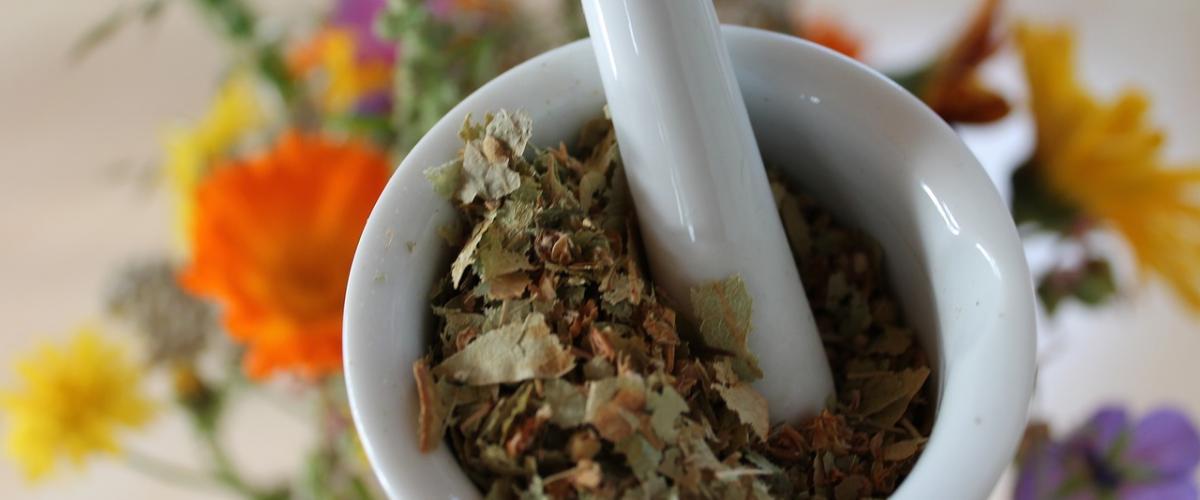 Bachblüten als  alternative Medizin