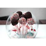Cake Pops Backform Bestseller