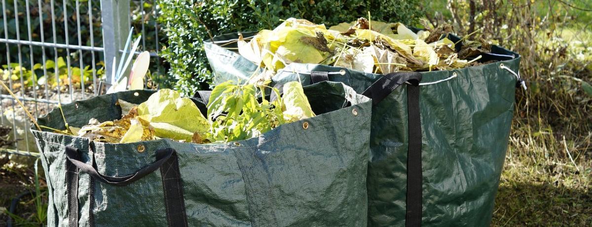 Gartenabfallsack Tipps und Vergleich