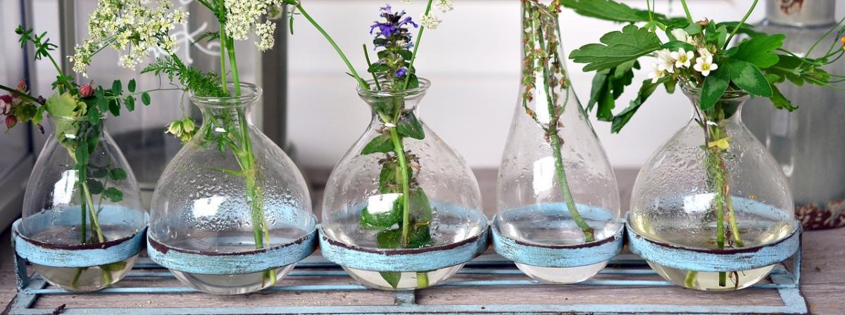 Glasvase Tipps und Vergleich