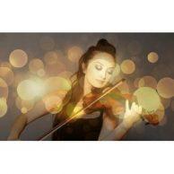 Geige Bestseller