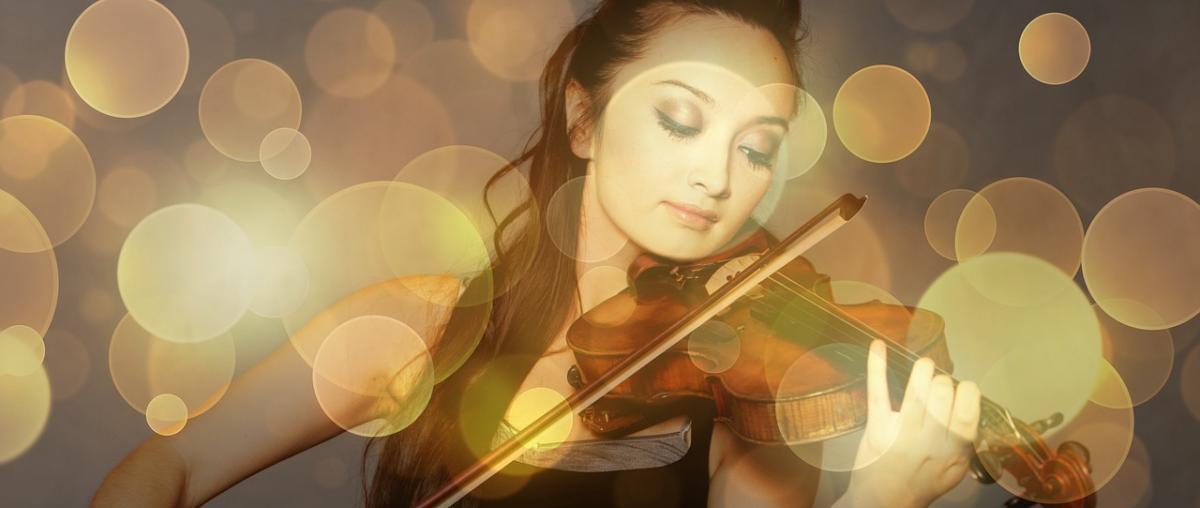 Geige Tipps und Vergleich
