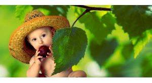 Babynahrung Bestseller