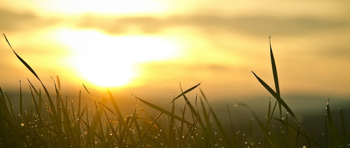Sonnenaufgang imitieren mit Lichtwecker