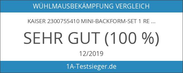Kaiser 2300755410 Mini-Backform-Set 1 Rezept 2 Kuchen