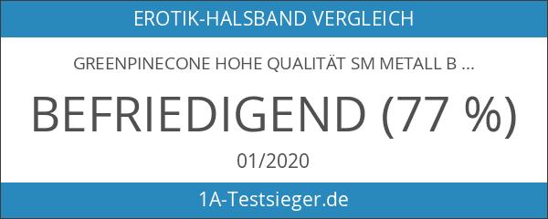 Greenpinecone Hohe Qualität SM Metall Bondage Fetisch Halsband Halsbänder Halsschmuckhalsband