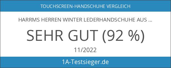 Harrms Herren Winter Lederhandschuhe aus Echtem Leder Touch Screen Gefüttert
