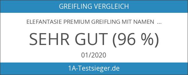 Elefantasie Premium Greifling mit Namen HOLZ Rassel Modell Bärenstark blau
