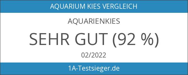 Aquarienkies