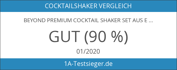 BEYOND Premium Cocktail Shaker Set aus Edelstahl: 500 ml Shaker