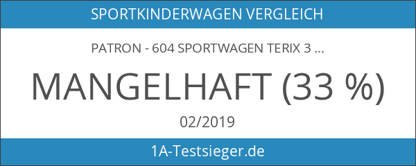 Patron - 604 Sportwagen Terix 3