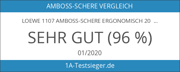 Loewe 1107 Amboss-Schere ergonomisch 20 cm