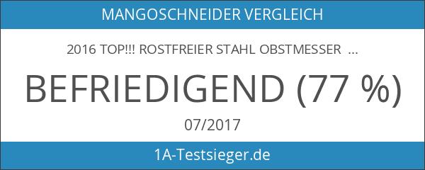 2016 Top!!! Rostfreier Stahl Obstmesser Melonenschneider Melonenmesser Wassermelone Entkerner Ausstecher