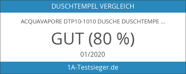 AcquaVapore DTP10-1010 Dusche Duschtempel Duschkabine Fertigdusche 90x90