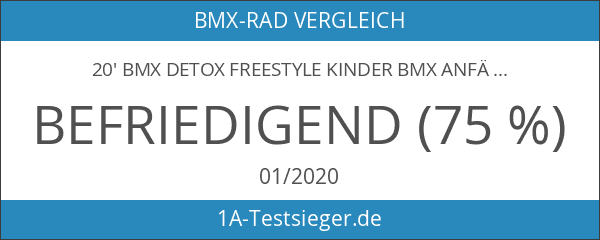 20' BMX deTOX Freestyle Kinder BMX Anfänger