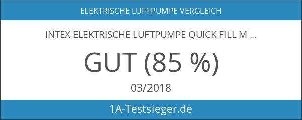 Intex Elektrische Luftpumpe Quick Fill Mini AC