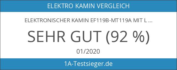Elektronischer Kamin EF119B-MT119A mit LED