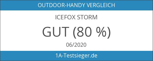 IceFox Storm