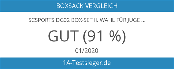 ScSPORTS DG02 Box-Set II. Wahl für Jugendliche Boxsack Boxhandschuhe Boxbandagen