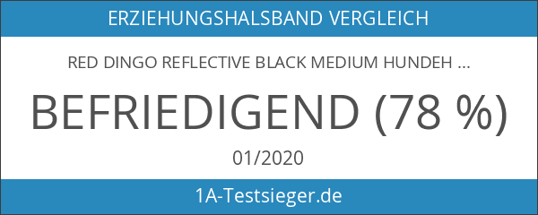 Red Dingo Reflective Black Medium Hundehalsband