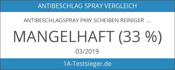 Antibeschlagspray PKW Scheiben Reiniger 250ml