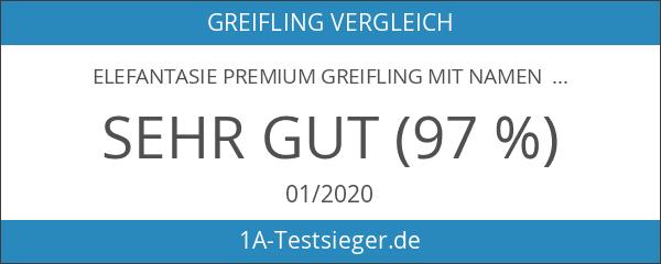 Elefantasie Premium Greifling mit Namen HOLZ Rassel Modell Eule Herz