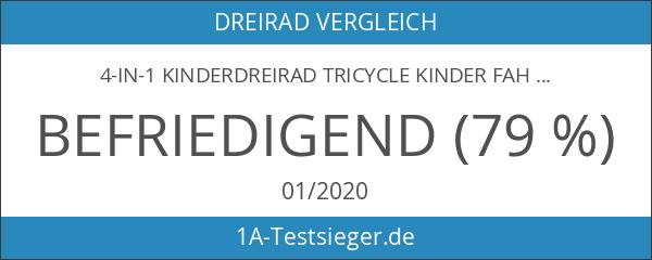 4-in-1 Kinderdreirad Tricycle Kinder Fahrrad Dreirad mit Sonnendach & Schubstange