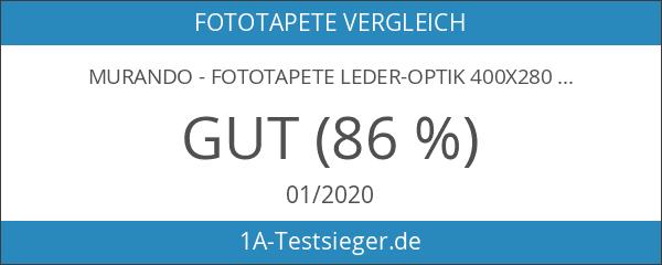 murando - Fototapete Leder-Optik 400x280 cm - Vlies Tapete -