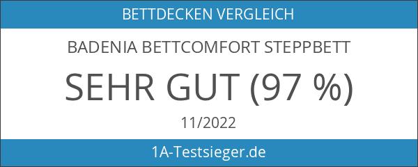 Badenia Bettcomfort 03649580140 4-Jahreszeiten-Steppbett Irisette Edition 135 x 200 cm