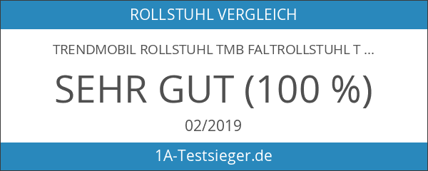 Trendmobil Rollstuhl TMB Faltrollstuhl Transportrollstuhl Reiserollstuhl mit Steckachsensystem - Sitzbreite