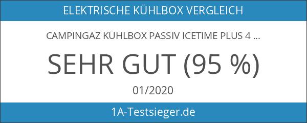 Campingaz Kühlbox Passiv Icetime Plus 42 L