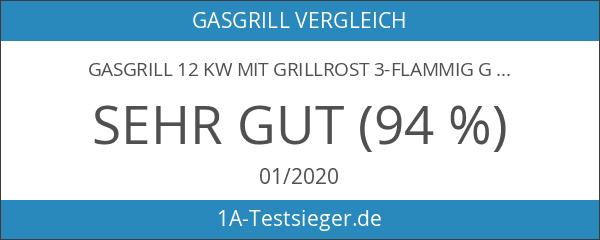 Gasgrill 12 kW mit Grillrost 3-flammig Gasgrill Grill Gastrobräter Profigrill