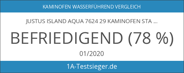 Justus Island Aqua 7624 29 Kaminofen Stahl Gussgrau 10kW wasserführend