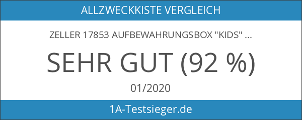 "Zeller 17853 Aufbewahrungsbox ""Kids"""
