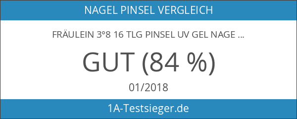 Fräulein 3°8 16 tlg Pinsel UV GEL Nagel NailArt Acryl
