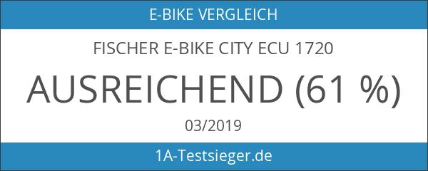 FISCHER E-Bike CITY ECU 1720