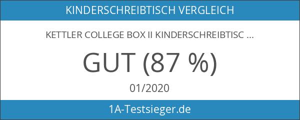 Kettler 06604-270 College Box Kinderschreibtisch silber