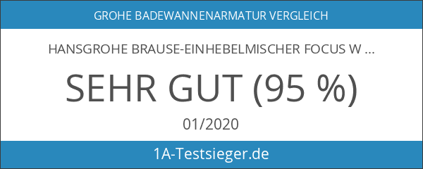 Hansgrohe Brause-Einhebelmischer Focus Wandmontage mit S-Anschlüssen