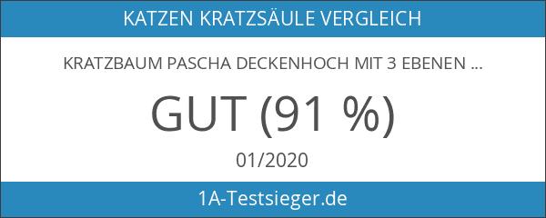 Kratzbaum Pascha Deckenhoch mit 3 Ebenen 240 - 260cm grau