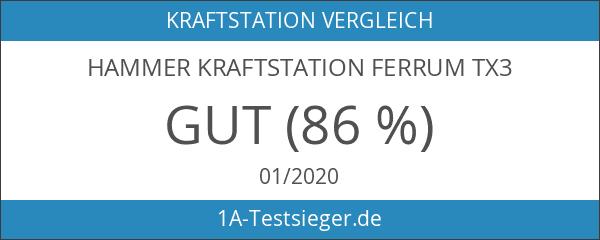 Hammer Kraftstation Ferrum TX3