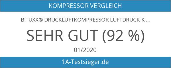 BITUXX® Druckluftkompressor Luftdruck Kompressor 24 Liter