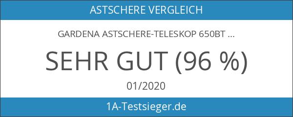 Gardena Astschere-Teleskop 650BT