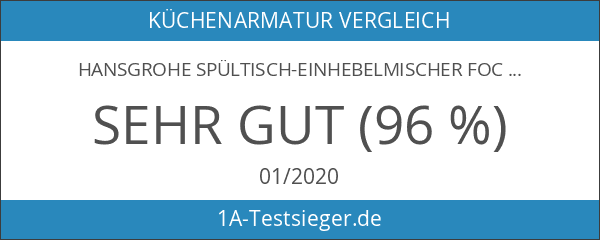 Hansgrohe Spültisch-Einhebelmischer Focus mit Schwenkbarem Auslauf