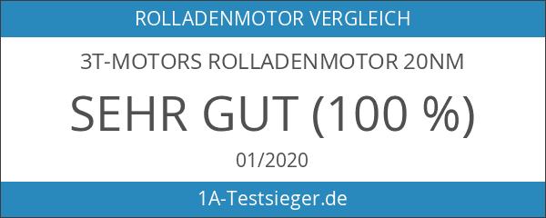 3T-MOTORS Rolladenmotor 20Nm