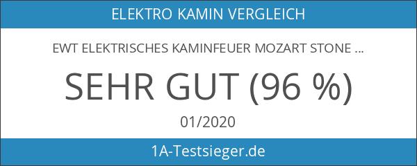 EWT Elektrisches Kaminfeuer Mozart Stone