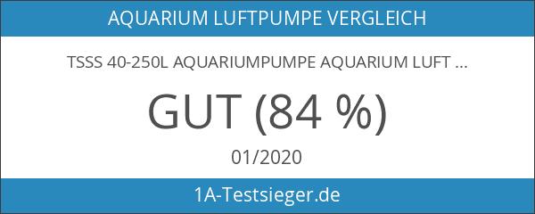 TSSS 40-250L Aquariumpumpe Aquarium Luftpumpen Wasserpumpen Sauerstoffpumpe Teichpumpe Luftpumpe Durchlüfter