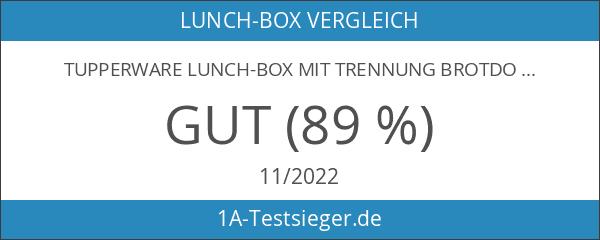 TUPPERWARE Lunch-Box mit Trennung Brotdose Lunchbox Brotbox türkis