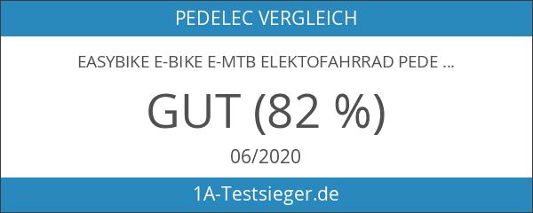 EASYBIKE E-Bike E-MTB Elektofahrrad PEDELEC M3 600 26 Zoll Bereifung