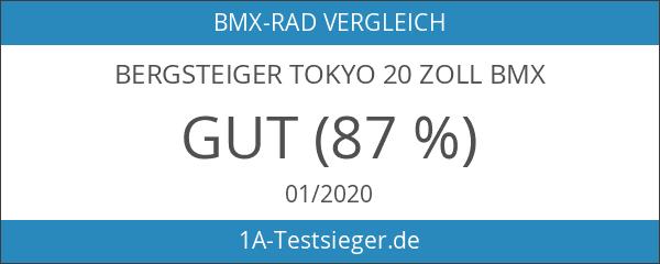 Bergsteiger Tokyo 20 Zoll BMX