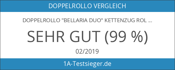 """Doppelrollo """"Bellaria Duo"""" Kettenzug Rollo Seitenzugrollo"""